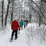 Active Adults: Snowshoeing & Snow Science
