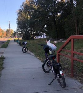 April Shooks Run Trail Clean Up