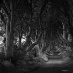 CALL FOR ARTISTS: 2019 Monochrome Photography Show Opens
