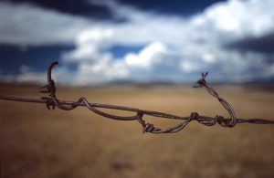 'Concrete and Barbed Wire'