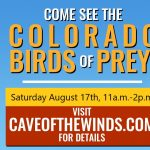 Colorado Birds of Prey presented by Cave of the Winds at Cave of the Winds, Manitou Springs CO