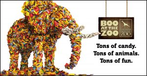 Boo at the Zoo 2019 presented by Cheyenne Mountain Zoo at Cheyenne Mountain Zoo, Colorado Springs CO