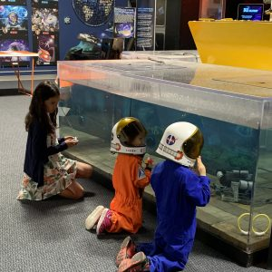 CANCELED: Spring Break Space Adventures presented by Space Foundation Discovery Center at Space Foundation Discovery Center, Colorado Springs CO