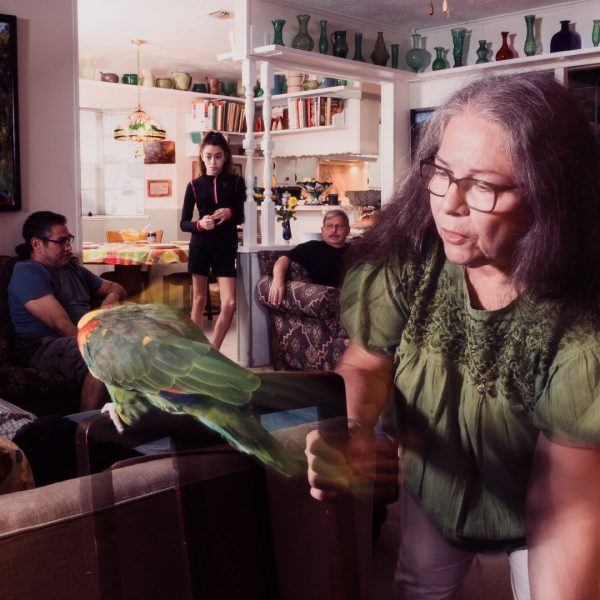 TEMPORARILY CLOSED: Pertenecer: Chicanx Artists on Belonging presented by Colorado Springs Fine Arts Center at Colorado College at Colorado Springs Fine Arts Center at Colorado College, Colorado Springs CO