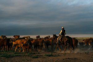 Chico Basin Ranch located in Colorado Springs CO