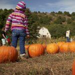 Rock Ledge Ranch Pumpkin Patch presented by Rock Ledge Ranch Historic Site at Rock Ledge Ranch Historic Site, Colorado Springs CO
