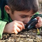 Introduction to Citizen Science presented by Catamount Institute at Catamount Institute, Colorado Springs CO