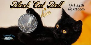 Black Cat Disco Ball Virtual Gala presented by Home at Online/Virtual Space, 0 0