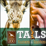 Tails, Tunes, & Tastes presented by Cheyenne Mountain Zoo at Cheyenne Mountain Zoo, Colorado Springs CO