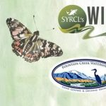 Wild & Scenic Film Festival presented by Fountain Creek Watershed District at Online/Virtual Space, 0 0
