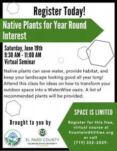 Native Plants for Year Round Interest presented by Native Plants for Year Round Interest at Online/Virtual Space, 0 0