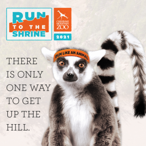 Run to the Shrine presented by Cheyenne Mountain Zoo at Cheyenne Mountain Zoo, Colorado Springs CO