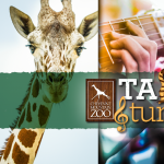 Tails & Tunes presented by Cheyenne Mountain Zoo at Cheyenne Mountain Zoo, Colorado Springs CO