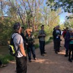 REGISTRATION CLOSED: Pikes Peak Birding and Nature Festival presented by Fountain Creek Nature Center at Fountain Creek Nature Center, Fountain CO