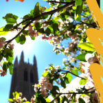 Come to My Garden: (Re-)Discover Your Voice through Play presented by Grace and St. Stephen's Episcopal Church at Grace and St. Stephen's Episcopal Church, Colorado Springs CO