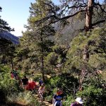 Green Box Arts Festival: Moderate Nature Hike presented by Green Box Arts Festival at ,
