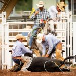 Ride for the Brand Ranch Rodeo presented by  at Norris Penrose Event Center, Colorado Springs CO