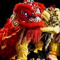15th Annual Chinese New Year Festival